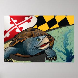 Tortuga acuática del ciudadano, la tortuga de Mary Impresiones