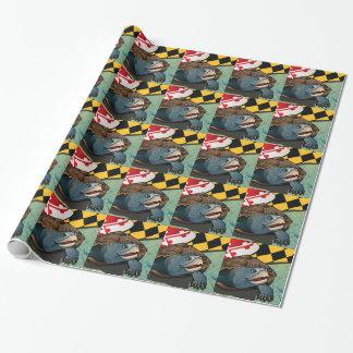Tortuga acuática del ciudadano, la tortuga de papel de regalo