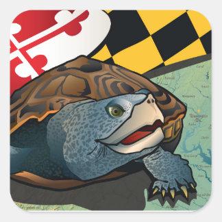 Tortuga acuática del ciudadano, la tortuga de pegatina cuadrada