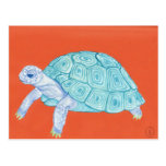 Tortuga azul tarjeta postal