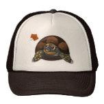 Tortuga de caja con el gorra de la hoja del otoño