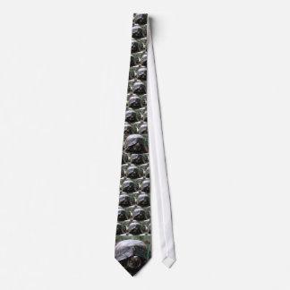 tortuga de caja del este corbata personalizada