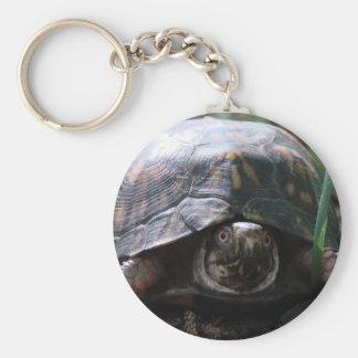 tortuga de caja del este llavero personalizado