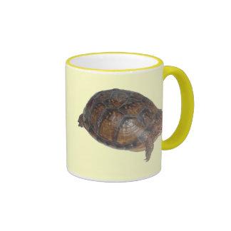 Tortuga de caja del este taza de café