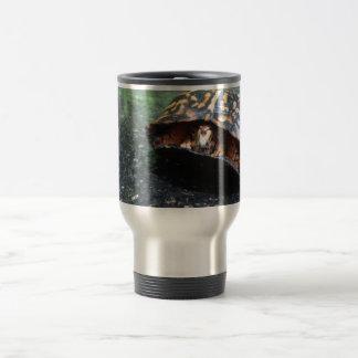 Tortuga de caja tazas de café