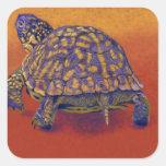 Tortuga de caja, tortuga calcomanías cuadradases