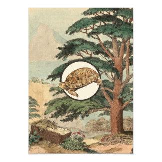 """Tortuga de desierto en el ejemplo del hábitat invitación 5"""" x 7"""""""