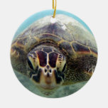 Tortuga de Hawaii Adorno De Navidad
