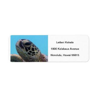 Tortuga de Hawaii de la bahía de Hanauma Etiquetas De Remite