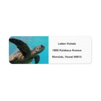 Tortuga de Hawaii de la bahía de Hanauma Etiqueta De Remite