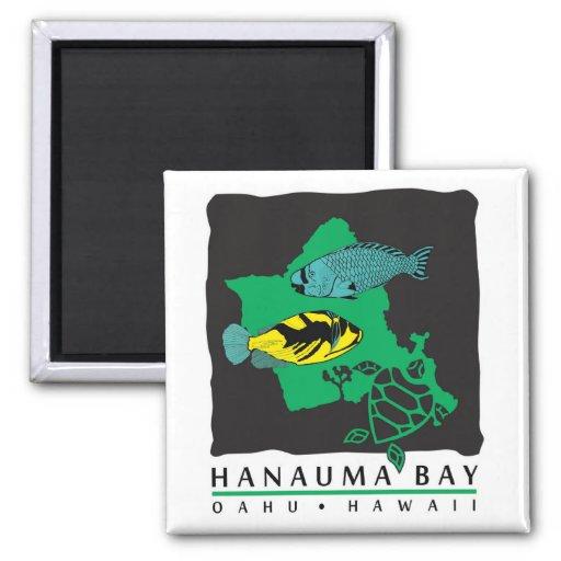 Tortuga de Hawaii de la bahía de Hanauma Imán De Nevera