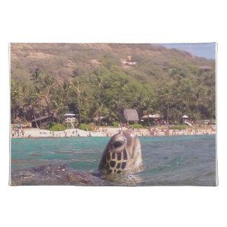 Tortuga de Hawaii de la bahía de Hanauma Mantel