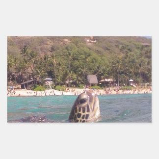 Tortuga de Hawaii de la bahía de Hanauma Pegatina Rectangular