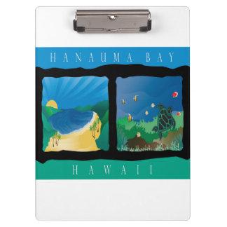 Tortuga de la bahía de Hawaii Hanauma