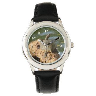 Tortuga de la charca reloj de mano