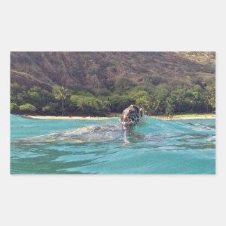 Tortuga de la hawaiana de Hawaii Rectangular Pegatina