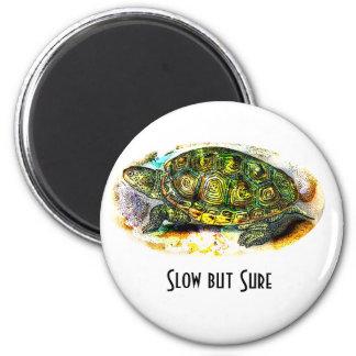 tortuga de la tortuga acuática de diamondback de J Imán Redondo 5 Cm