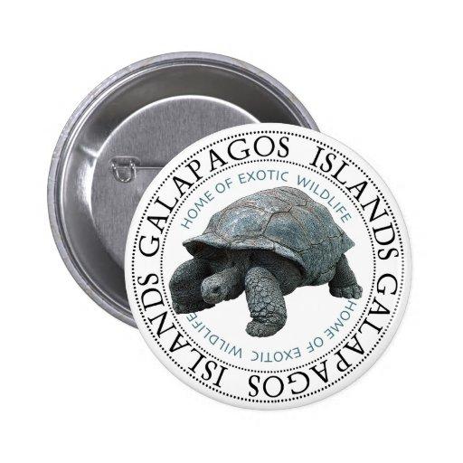 Tortuga de las islas de las Islas Galápagos Pins