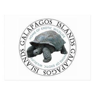 Tortuga de las islas de las Islas Galápagos Postales