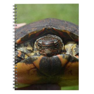 Tortuga de madera adornada a disposición cuadernos