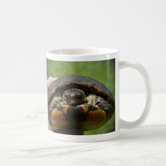 Tortuga de madera adornada a disposición taza de café