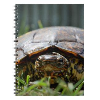 Tortuga de madera adornada en su nivel en hierba cuaderno