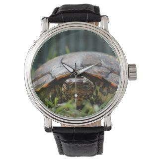 Tortuga de madera adornada en su nivel en hierba relojes de mano