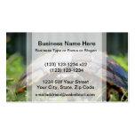 Tortuga de madera adornada en su nivel en hierba tarjetas de negocios