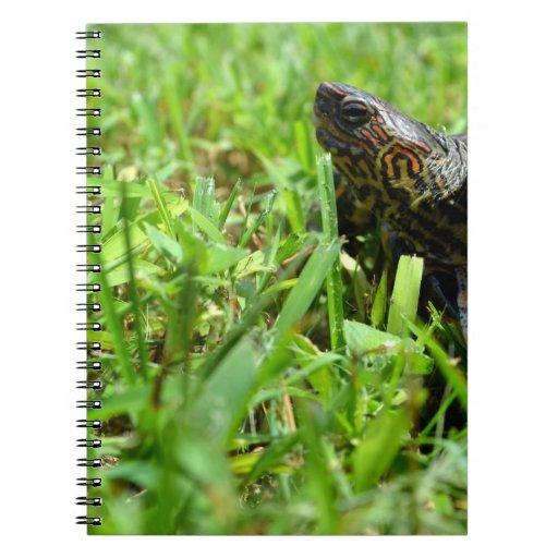 tortuga de madera adornada que mira a la izquierda note book