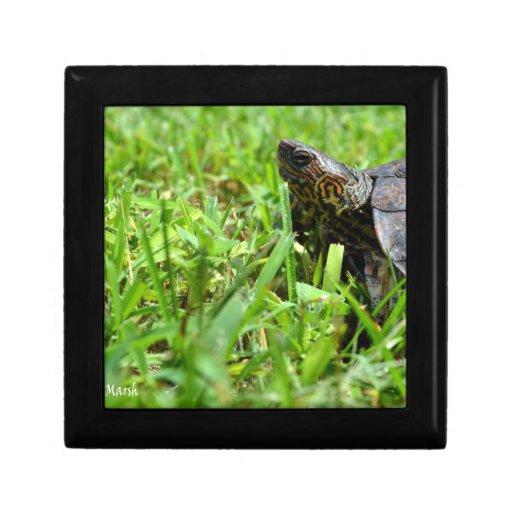 tortuga de madera adornada que mira a la izquierda joyero cuadrado pequeño
