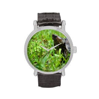 tortuga de madera adornada que mira a la izquierda reloj