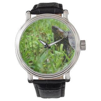 tortuga de madera adornada que mira a la izquierda relojes