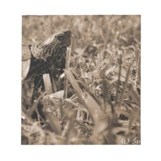 tortuga de madera adornada que mira sepia correcta libretas para notas