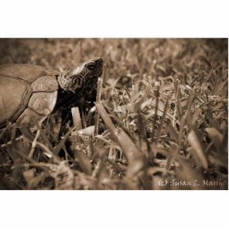 tortuga de madera adornada que mira sepia correcta fotoescultura vertical
