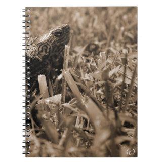 tortuga de madera adornada que mira sepia correcta libro de apuntes con espiral