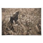 tortuga de madera adornada que mira sepia correcta mantel