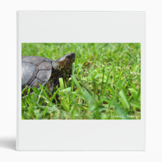 tortuga de madera adornada que parece derecha