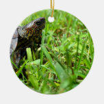 tortuga de madera adornada que parece derecha ornamento para reyes magos