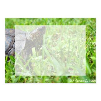 """tortuga de madera adornada que parece derecha invitación 5"""" x 7"""""""