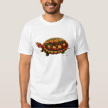 Tortuga de madera centroamericana playeras