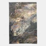 Tortuga de mar adulta toallas