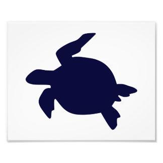 Tortuga de mar azul marino B horizontal Fotografia