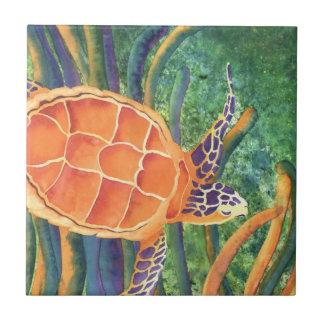 Tortuga de mar azulejo