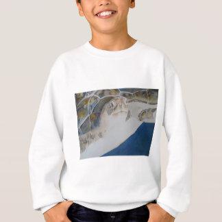 Tortuga de mar de Ridley Remeras