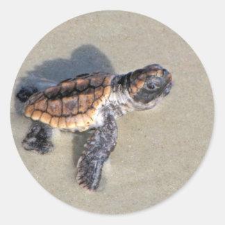 Tortuga de mar del bebé apenas tramada etiqueta redonda