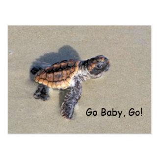 Tortuga de mar del bebé apenas tramada postal