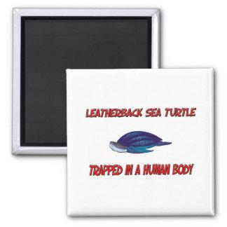 Tortuga de mar del Leatherback atrapada en un cuer Iman De Nevera