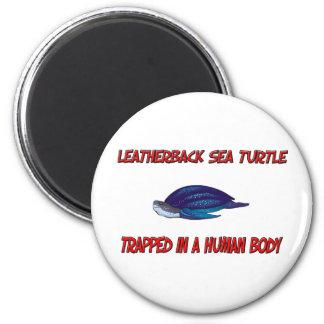 Tortuga de mar del Leatherback atrapada en un cuer Imanes