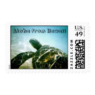 Tortuga de mar en la isla de Hawaii Franqueo