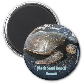 Tortuga de mar en la playa negra Hawaii de la aren Imanes De Nevera